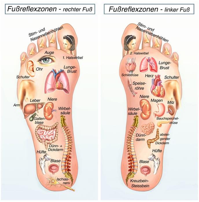 Fußreflexzonenmassage Fußreflexzonen